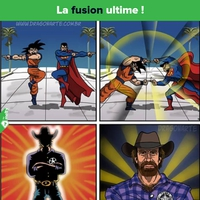 Fusion ultime