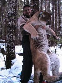 Pote avec un puma