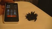 Action téléphone à la poudre magnétique