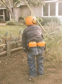 Halloween, mon c*l !