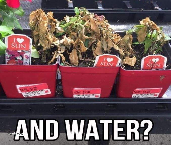 Et l'eau ?
