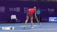 Insecte sur le court de tennis
