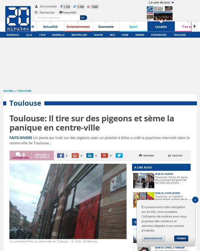 Bah non c'est des pigeons...