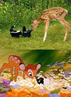 On a retrouvé Bambi