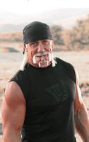 Hulk hoganception