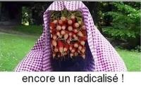Radicalisé