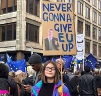 Panneau anti-Brexit