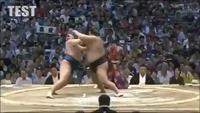 Un combat de sumo