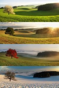 1 paysage, 4 saisons