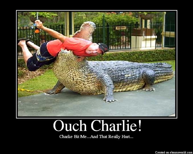 Ça doit fair mal, Charlie.