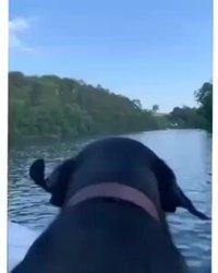Balade sur l'eau