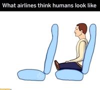 Comment les compagnies aériennes pensent que la morphologie des humains est ainsi: