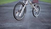 Vélo à pédalage linéaire