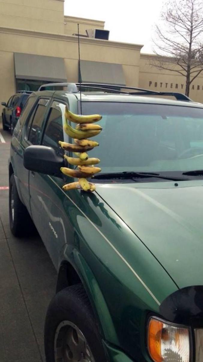 Les bananes, ça s'enfile. (jeu de mots)