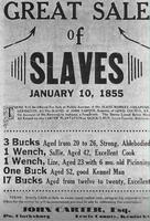 1855 : Approchez ladies & gentlemen, faites votre marché !