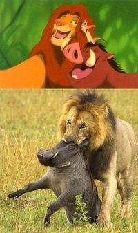 Disney et la vie réelle