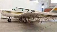 """Des ethnologues en ont déduit que cette tribu amazonienne ne souhaitait pas être """"civilisée"""""""