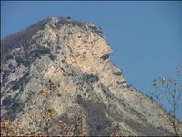 Montagne singe