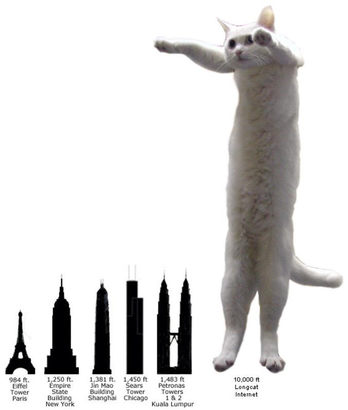 Plus haut que Longcat, y'a pas.