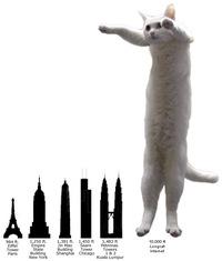 Les monuments les plus hauts du monde