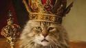 Le Roi des FDP