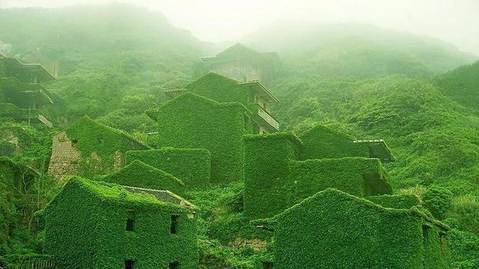 La nature reprend ses droits sur un village abandonné. Les pêcheurs qui y habitaient ont peu a peu quitté l'endroit pour la ville (photo de Jane Qing).