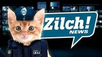 L'arrivée des chats policiers