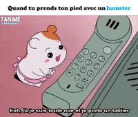 Un hamster tout mignon et un téléphone