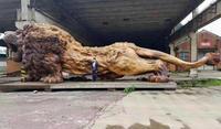Le roi des sculptures en bois