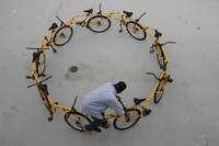 Le velo circulaire