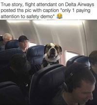 Bienvenue à bord, veuillez prêter attention aux consignes de sécurité