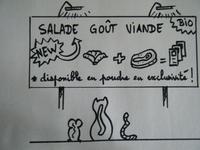 Salade gout Viande