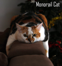 Monorail cat 3