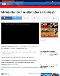 Une ville a ré-élu un Montagne des Pyrénées pour Maire dans le Minnesota