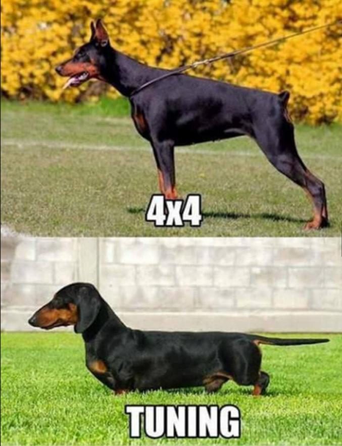 Une différence de taille.