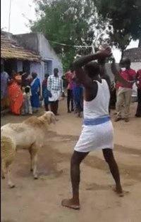 Le mouton enragé