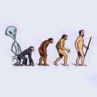 L'évolution, tout s'explique!