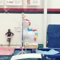 Licorne gymnaste