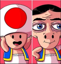 Toad, son secret dévoilé ^^