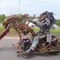 Alien motard