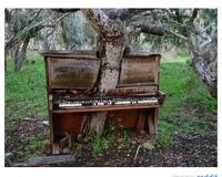 Il jouait du piano debout de bois.