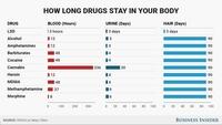 Les drogues dans votre organisme