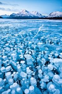 Bulles de méthane gelées dans un lac