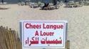 Chees langue