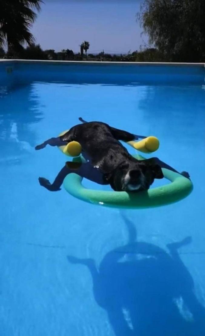 À la piscine.
