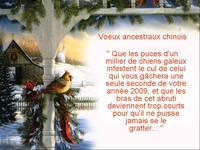 Meilleurs vœux 2009