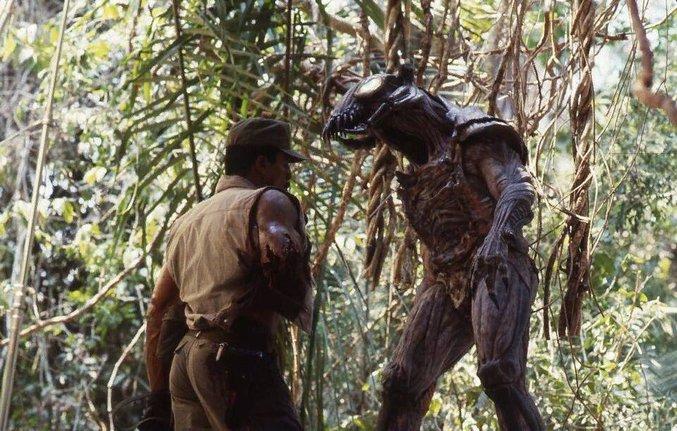 A l'origine, c'est Jean Claude Van Damme qui devait incarner la créature du film, dans ce costume. plus de détails en anglais: http://bloody-disgusting.com/movie/3497145/high-quality-photo-surfaces-jean-claude-van-damme-predator/