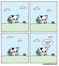 Un trait d'esprit animal