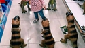 L'enfant et les dinosaures