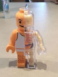 Anatomie d'un Lego